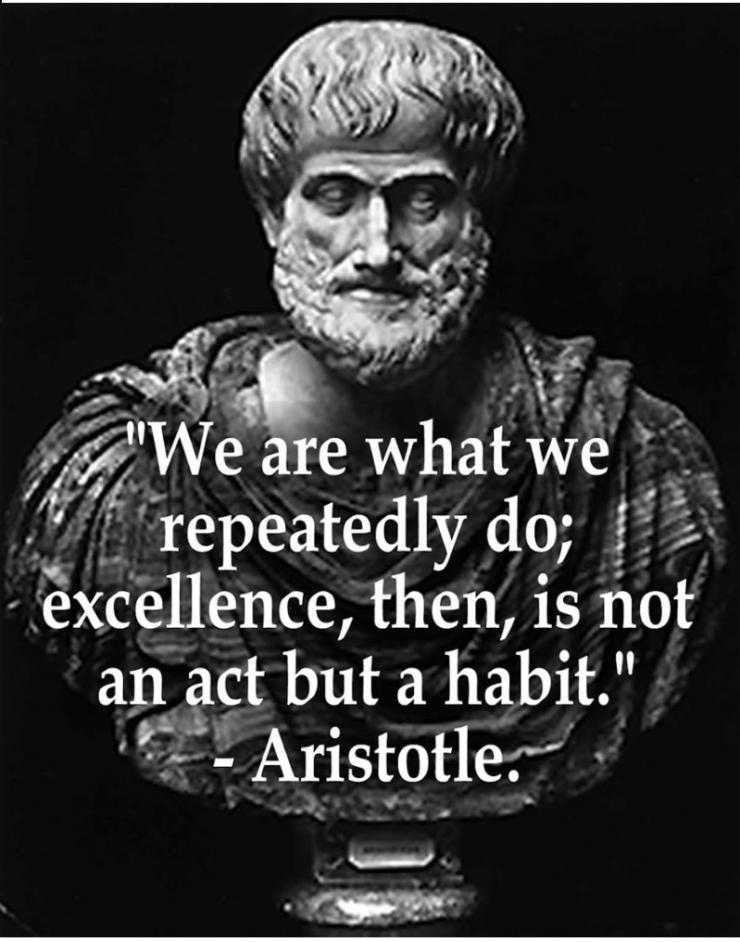 aristotle-success-large.jpeg